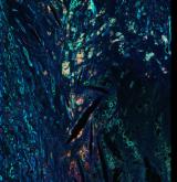 <h5>Daisy Picavet and Stefan Havik</h5><p>Een bloedvat aangedaan door atherosclerose (aderverkalking), om de plaque heen zie je dat macrofagen ook positief zijn voor lubricine (=PRG4) en dus proberen de plaque op te ruimen.DAPI (ch1) kernen, Cyaan (ch2) smooth muscle cells, Groen (ch3) PRG4/Lubricine, Rood (ch4) macrofagen. (zoom 2)</p>